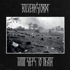 BOLVERKSTORM - 9 Steps to Death CD
