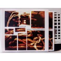 MERZBOW / GENESIS BREYER P-ORRIDGE - A Perfect Pain CD