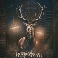 IN THE WOODS... - Cease The Day 2LP